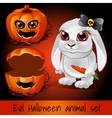 Pumpkin and rabbit on a dark red background vector image