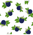 Seamless Pattern of Blackberry vector image