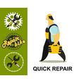 bicycle repair vector image