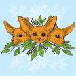 Fennec fox faces vector image