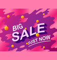 big sale text discount shopping concept vector image