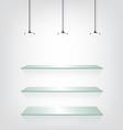 Glass shelves with spot light vector image