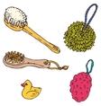 Bathroom Elements Sponges Washcloths and Brushes vector image