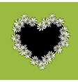 Daisy floral heart for your design vector image