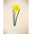 Dafodills on grunge background vector image