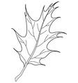 leaf of oak iberian contour vector image