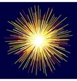 Bright flash image vector image