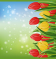 spring banner with blooming tulip vector image