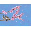 Love birds sakura spring Valentines Day vector image vector image