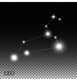 Leo Zodiac Sign of the Beautiful Bright Stars vector image