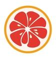 Red grapefruit stylish icon Juicy fruit logo vector image