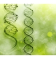 dna strand background vector image vector image