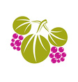 Three flat green leaves with purple berries or vector image