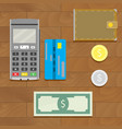 money cash and credit card vector image