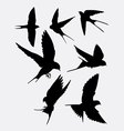 Swallow bird animal silhouette vector image