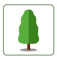 Oak poplar tree icon vector image vector image