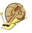 Cartoon snail in sunglasses vector image