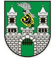 coat of arms of zielona gora city in lubusz vector image
