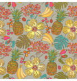 Pattern hibiscus tropical flowers vector image