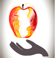 Red abstract apple and gray hand vector image