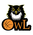 Retro owl logo basketball team vector image