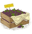 Wooden Box with Ripe Grapes vector image