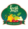 banner fresh juice with various fruits and berries vector image vector image
