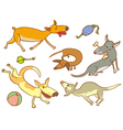 Cute dogs vector image vector image