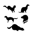 Mink silhouettes vector image
