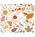 Autumn floral design elements in doodle style vector image vector image