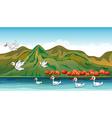 Ducks in quest of food vector image