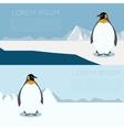 Antarctic banner1 vector image vector image