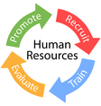 Human Resources cycle vector image vector image