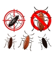 cockroach set icons vector image