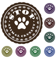 stop animal cruelty vector image