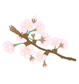 Abstract apple tree branch vector image