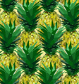 close lowpoly pineapple pattern vector image