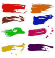 Dabs of paint vector image