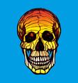 Detailed hand-drawn of skull grunge vector image