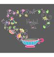Herbal tea vector image