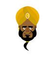 indian face in turban happy emoji head man of vector image