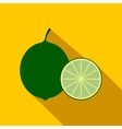 Lime icon flat style vector image