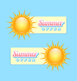 Summer offer vector image