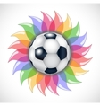 Football and flower vector image