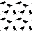 Black and white seamless pattern with birds vector image