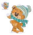 a brown teddy bear vector image