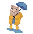 Cartoon Pig in Rain Gear vector image