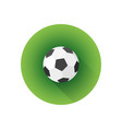flat color soccer ball vector image