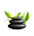 Stack of spa stones with grass and sunshine vector image