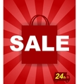 poster sale with a bag vector image